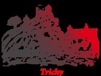 Trichy-city